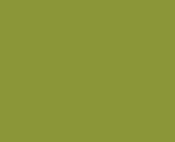 Цвет лака: «Оливковый»