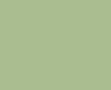 Цвет лака: «Салатовый»